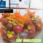 我们正在寻找进口商,经销商或小经销商需要泰国水果和蔬菜